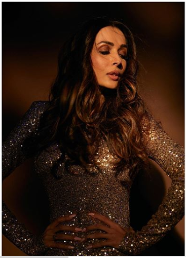 Malaika Arora Looks Astonishing In This Glittery Gown